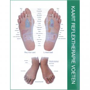Chart Feet NL