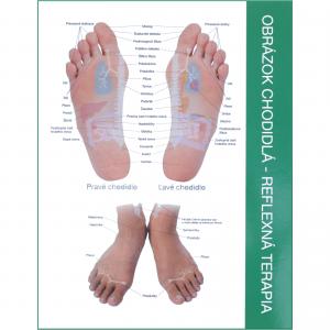 Chart Feet Slvk
