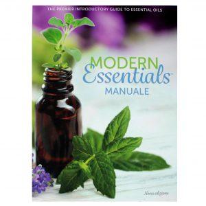 Handbook IT (002)